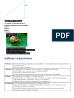 Anatomía de Vertebrados e Invertebrados