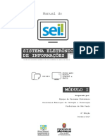 Manual-Módulo-I-SEI_out17.pdf