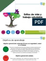 Presentacion estilos de vida saludable.pdf