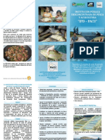 IDP PACU Folleto
