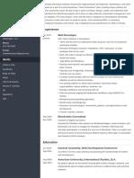 web-developer.pdf