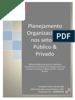 1 - Apostila da Disciplina Planejamento Org. - 20-03-13-2.pdf