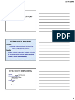SISTEMA GENITAL MASCULINO 2015.pdf