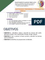 Visceras Del Cuello , Fascia Cervical y Proyeccion Vertebral