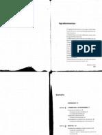 Planejamento_de_Comunicação__Lupetti
