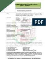 ACTA - PLIEGO DE OBSERVACIONES MATIBAMBA.docx