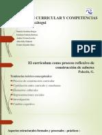 Construcción Curricular y Competencias (1)