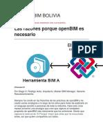 bim_en_bolivia[1].docx