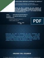 Examen Especial Auditoria del Sector Publico.pptx