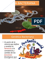 genetica bacteriana resumida 2019 (14).pdf