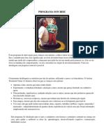PROGRAMA SON RISE - APOSTILA PRONTA.pdf