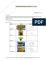 Cotizaciòn- Diseño de jardineria.pdf