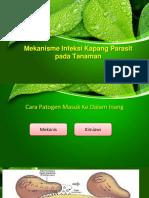 ppt mikrobiologi
