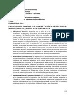 CONTENIDO EXAMEN FINAL (1) DERECHO IMDIGEMA.docx
