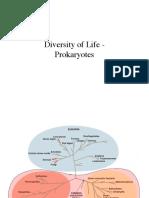 12-Prokaryotes.pdf