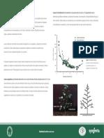 p09.en.es.pdf