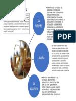 INFOGRAFÍA ANIMADOR DE LA FIESTA.pdf