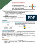 Resumen Examen Fundamentos (1).docx