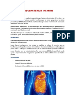 BIFIDUBACTERIUM INFANTIS.docx