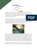 Hiastamina.pdf
