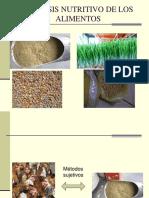 6. Análisis nutritivo de los alimentos y utilización de los nutrientes.pdf