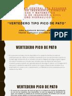 VERTEDERO PICO DE PATO.pdf