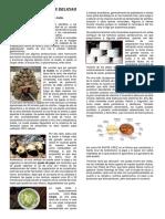 Santa Cruz de Andamarca Reportaje.docx