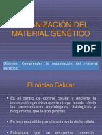 CLASE 3_IV°MEDIO.pdf