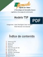 modelotsp.pdf