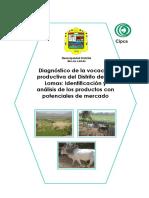 Diagnóstico de la voacación productiva las lomas Feb 28.pdf
