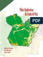 Polos madeireiros no Pará.pdf