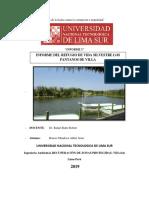 INFORME PANTANOS DE VILLA.docx