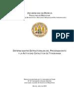 OlivaresSanchez.pdf