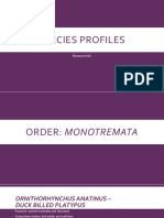 species profiles