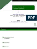 expresiones algebráicas.pdf