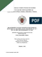 TESIS DE CERN.pdf