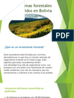Ecosistemas forestales intervenidos en Bolivia.pptx