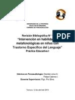 revision-bibliografica-1.docx