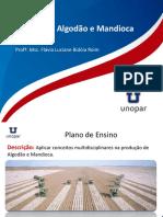 Aula_Zero_Plano_de_Ensino_Fitotecnia_Algodao_Mandioca.pptx