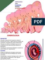 CLASE Nº 1 embriología.pptx