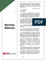 Normas Basicas PEE (1).pdf