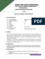 UJCM - SILABO DERECHOS HUMANOS Y MEDIO AMBIENTE-2019.docx