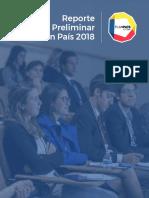 pp-reporte-preliminar-2018-final.pdf