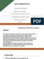organización de comités.pptx