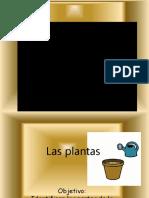 Las plantas  y sus partes.pptx