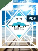 BRIEF BLUE TRIP.pdf