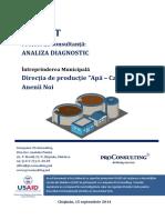 anexa_3a_analiza_diagnostic_im_directia_productie_apa_canal_anenii_noi_ro.pdf