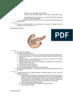 Tema52.pdf