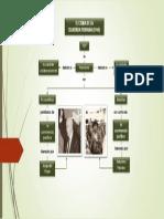 Presentación en PPT