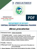 Abrus precatorius ppt.pptx
